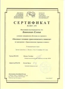 Сертификат Эриксоновская терапия и гипноз 001